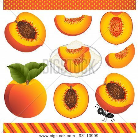 Peach Digital Clipart