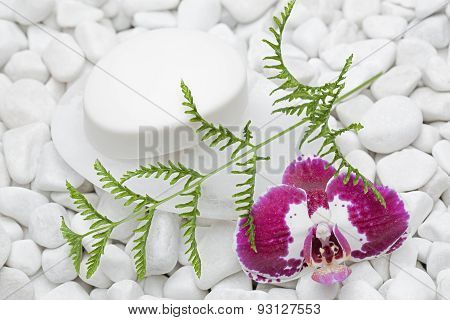 soap bar and orchid on white peeble stones