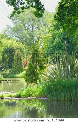 English garden with trees and pond