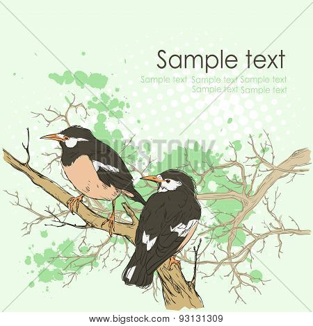 Background with birds and space for text