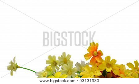 Artificial Flowers Isolate On White Background