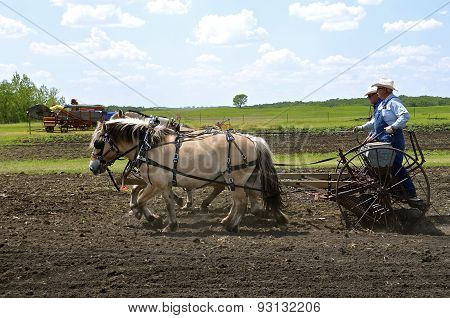 Several farmers plant grain with a horse pulled drill.