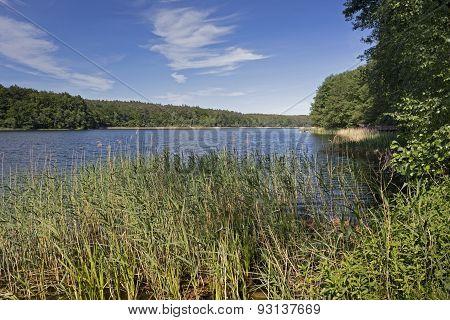 Bathing lake in East Germany, Uckermark