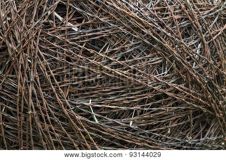 ball of barbed wire, closeup