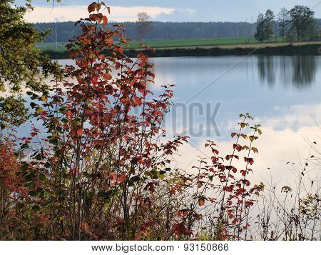 Landscape Ponds, South Bohemia