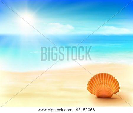 Shell on the beach. Vector Illustration.