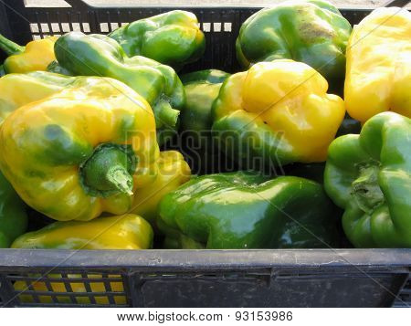 Green And Yellow Peppers In Box