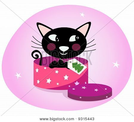 Black Christmas kitten in a pink gift box