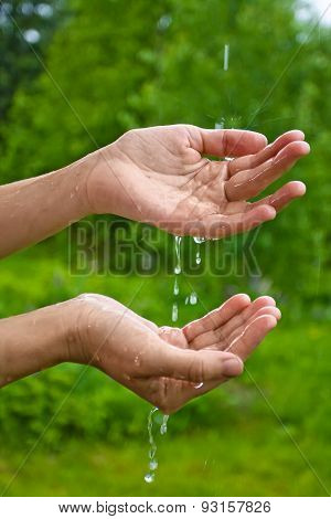 Hands Catching Raindrops