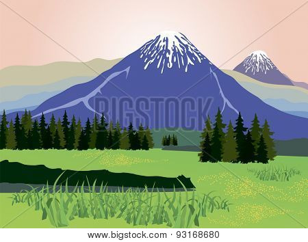 Illustration of beauty landscape fir tree and mountain background