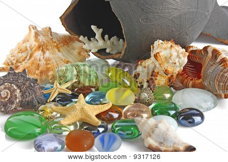 Seashells And Stones Background