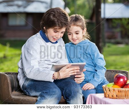 Happy siblings using digital tablet while sitting on chair at campsite