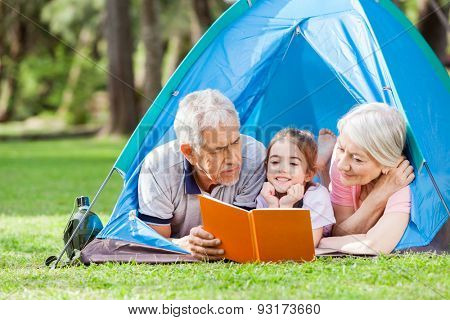 Grandparents with granddaughter reading book in tent at park