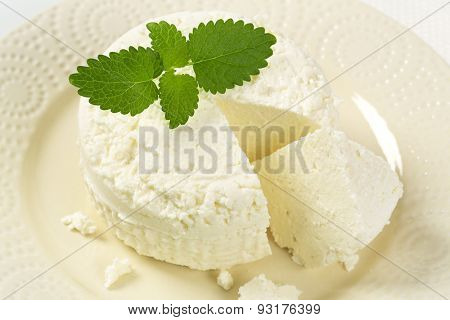 detail of fresh curd cheese and mint on white plate