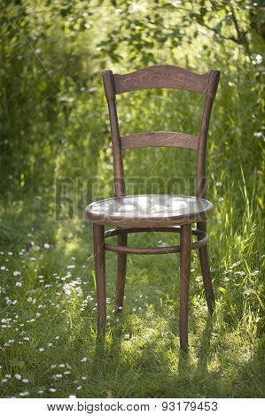 Vintage Empty Chair In Fresh Green Sunny Garden