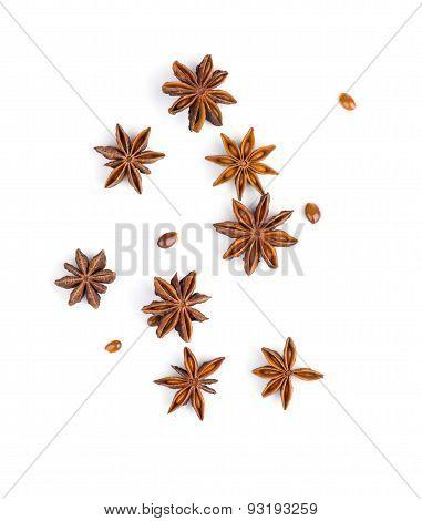 Star anise on white background