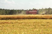 foto of combine  - Combine machine with cutting blade is working in grain summer field - JPG