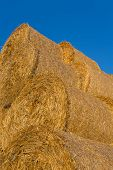 picture of hay bale  - Piled hay bales on a field against blue sky at sunset time - JPG