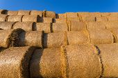 pic of hay bale  - Piled hay bales on a field against blue sky at sunset time - JPG