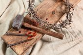 stock photo of thorns  - Crown of thorns - JPG