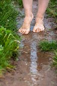 stock photo of barefoot  - feet of a young woman walking barefoot through the puddles - JPG