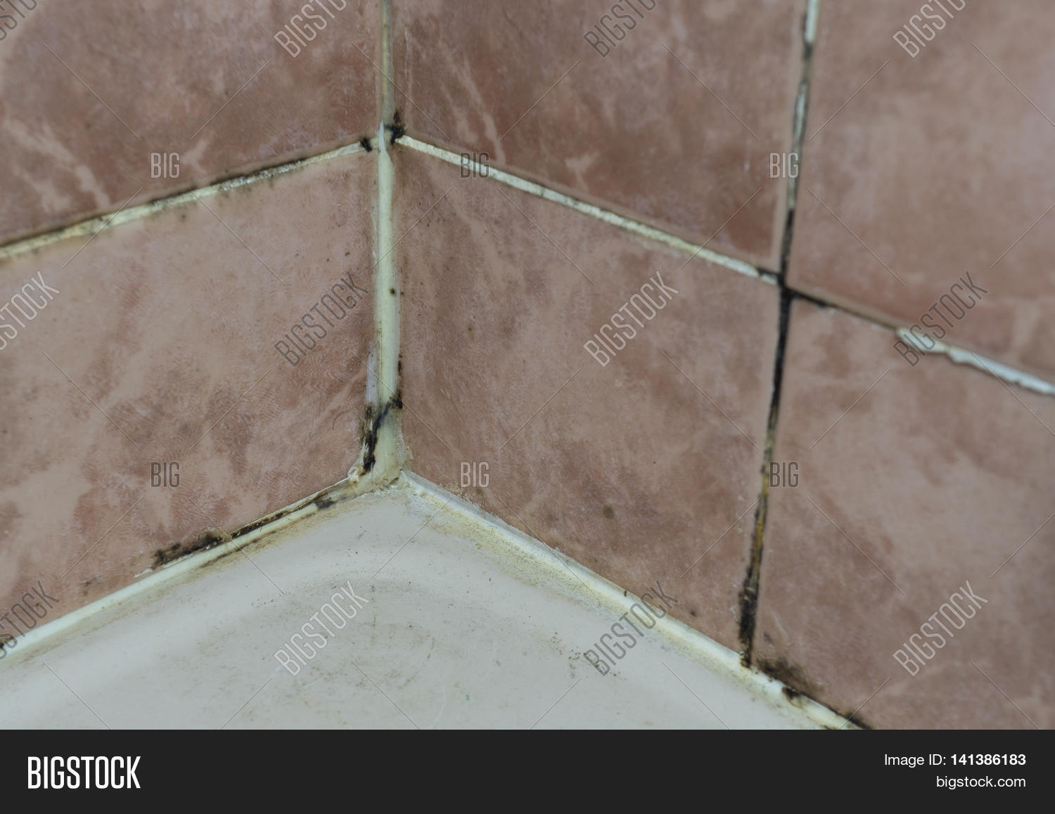 how to kill black mold in shower