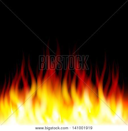 denger burning fire flame on black background