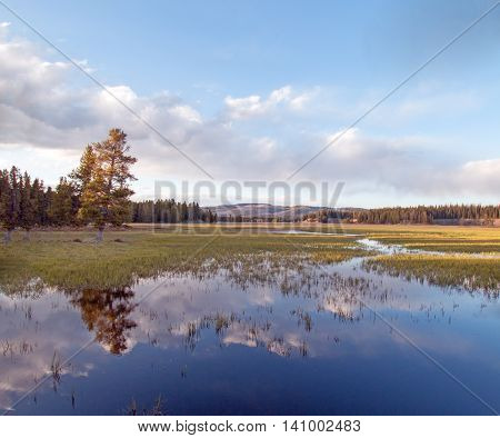 Pelican Creek at sunset in next to Yellowstone Lake in Yellowstone National Park America
