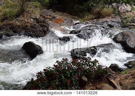 tropical datanla waterfall in the forest in dalat vietnam