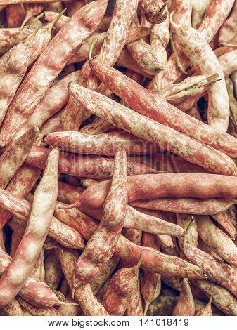 Cranberry Beans Vintage Desaturated