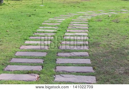 Stone walkway in green grass field backyardselect focus front and soft-focus background.