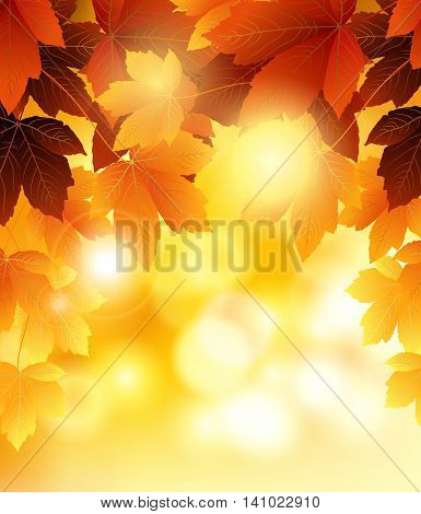 beauty Autumn leaves background for you design