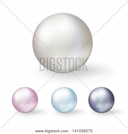 Pearls. Set of coloring shell pearls isolated on white background.