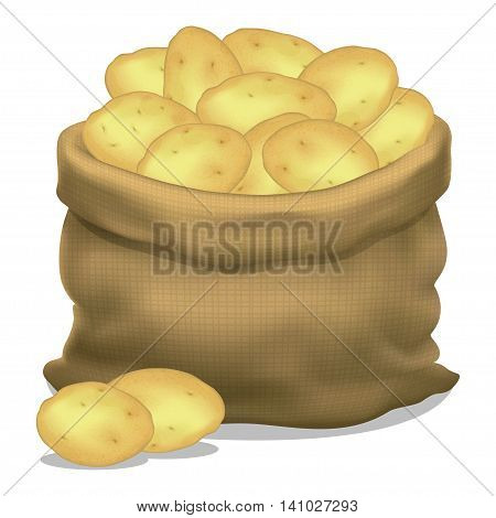Illustration of a sack of potatoes on a white background. Vector icon