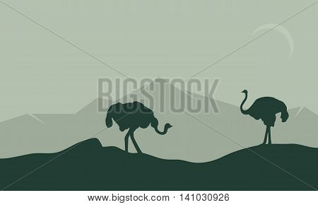 Silhouette of ostrich in hills on green backgrounds