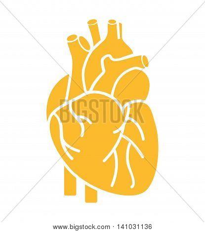 heart organ human isolated icon vector illustration design