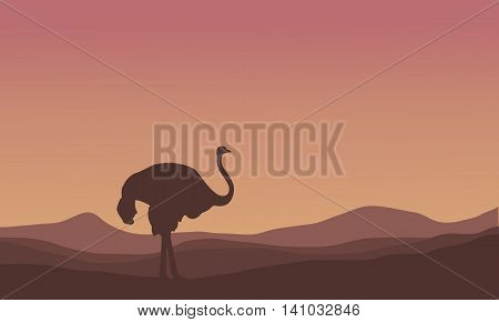 Silhouette of scenery ostrich in the hills illustration