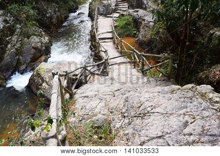 road through the forest in datanla waterfall in dalat vietnam