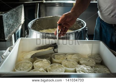 Making Of Ricotta Cheese