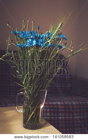 Beautiful blue cornflower herb bunch flowers in a glass vase on wooden table dark interior background with sunshine. Summer time concept. Still life rustic style. Fresh floral home decor.
