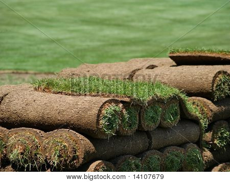 Rolls Of Sod On A Turf Farm