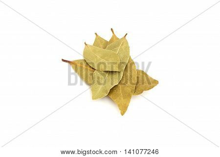 Dry bay laurel leaves isolated on white background