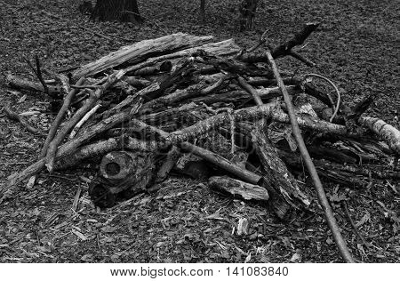 Pile Of Firewood At Summer Black And White