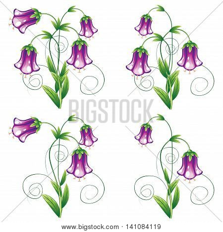 Bluebell Flower With Leaves