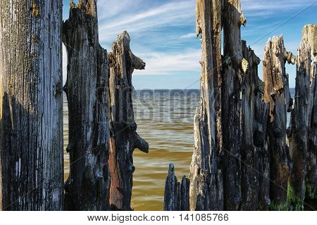 Baltic Sea horizon line through the number of residues of piles of old wooden pier on the background of waves and blue sky in the clouds