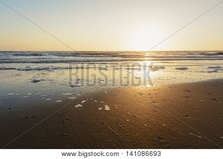 Sea foam on the shores of the North Sea during sunset.