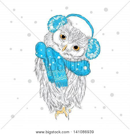 Owl Wearing A Scarf And Headphones . Winter. Watercolor . Vector Illustration For Greeting Card, Pos