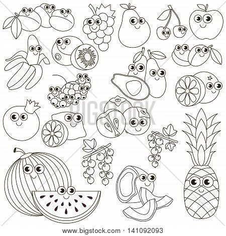 Big summer fruit set in vector, the colorless version.