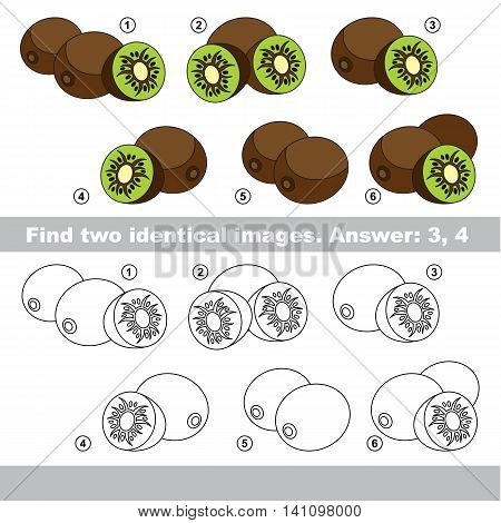The design difference. Vector visual game for kid education. Simple level of difficulty. Easy educational game. Task and answer. Find two similar Kiwifruits.