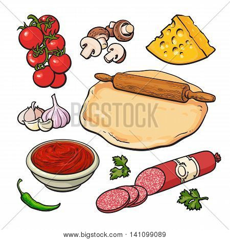 Set of sketch style pizza ingredients, illustration isolated on white background. Basic ingredients for cooking pizza - dough cheese mushrooms tomatoes garlic salami